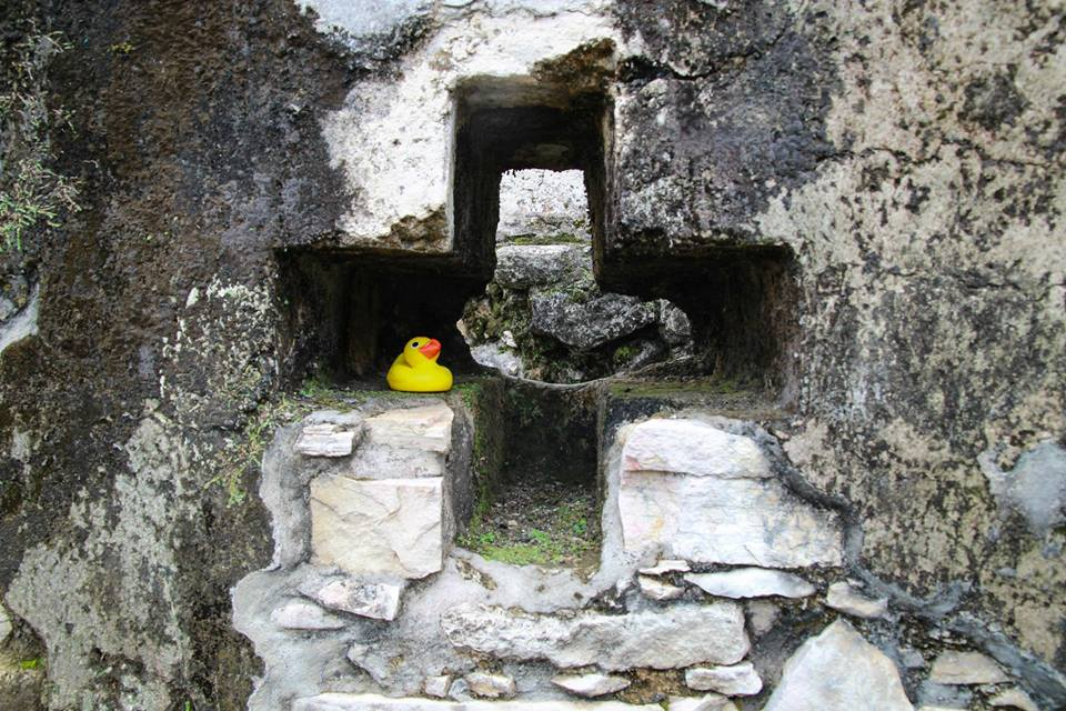 Cross With A Duck