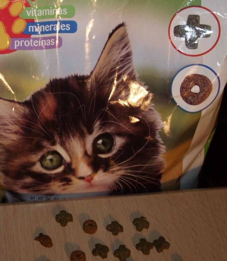 Food For Kittens
